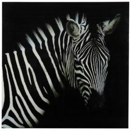 Schilderij Zebra L Zwart/Wit Woonaccessoires countryfield