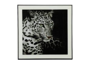 Schilderij Luipaard S Woonaccessoires countryfield